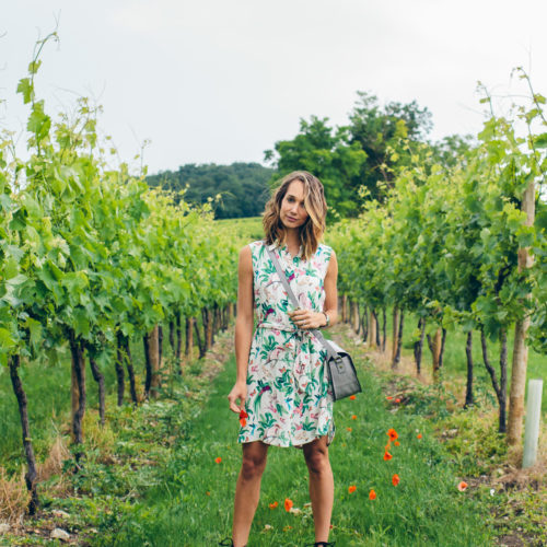 trip to Bordeaux France —Blair Staky of The Fox & She